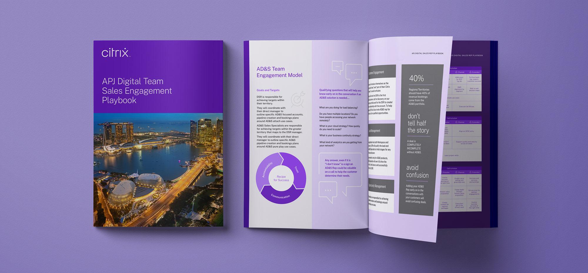 Citrix brochure design